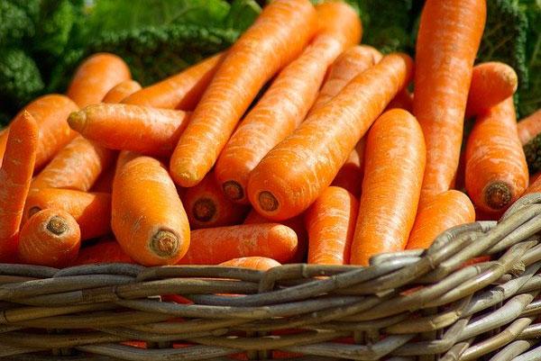 distribuidor-hortalizas-beneficios