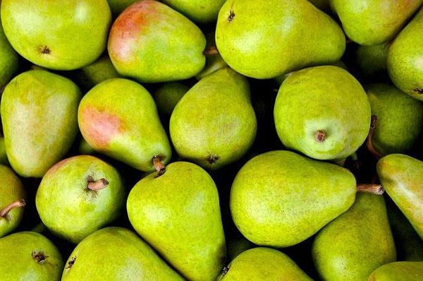frutas-de-otoño-temporada