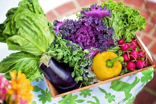 verduras-de-temporada-de-verano